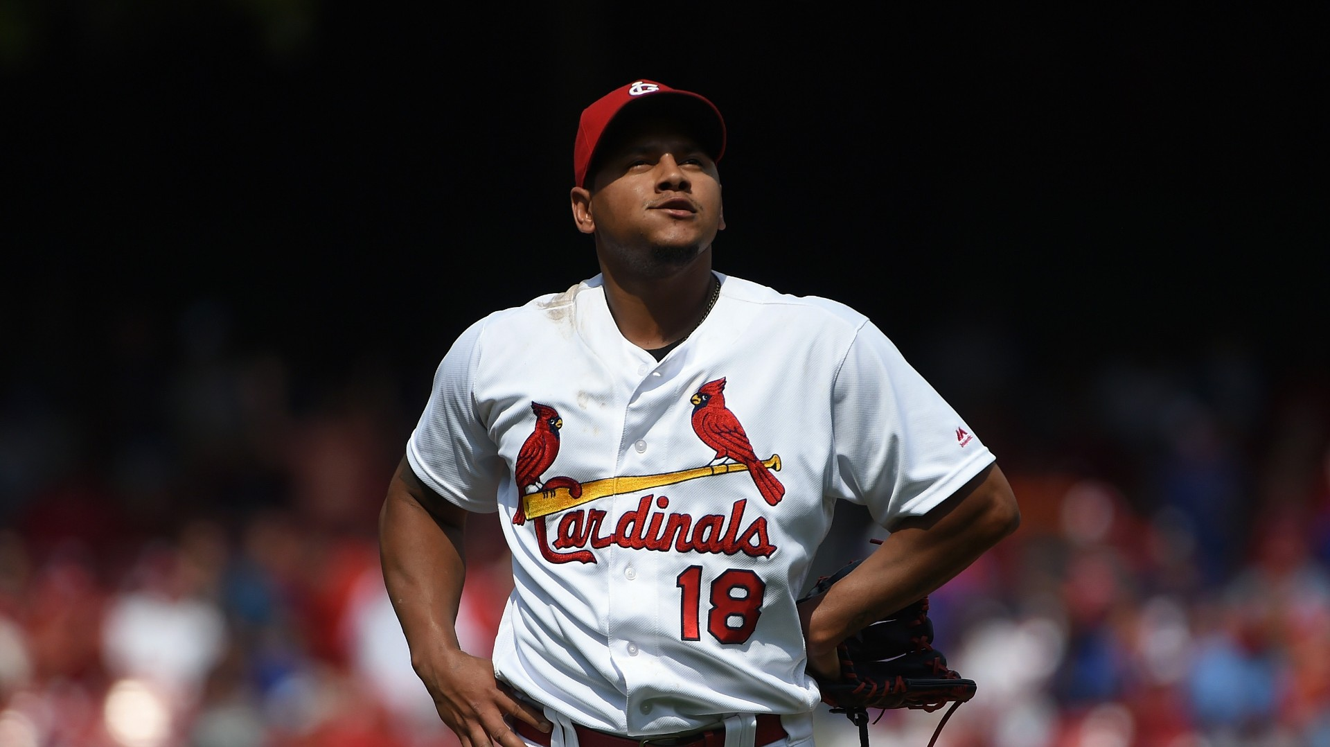 Schaber projected 2017 starting pitching rotation - Carlos martinez garcia ...